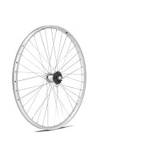 rueda 650x35 B contrapedal